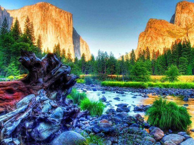 Камень галька скалы горы зеленая трава поле деревья голубое небо фон ствол дерева природа