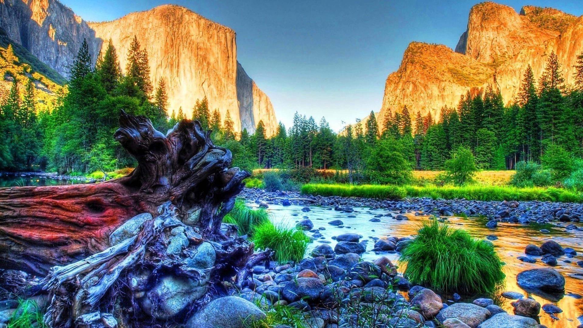 Камень галька скалы горы зеленая трава поле деревья голубое небо фон ствол дерева природа обои скачать