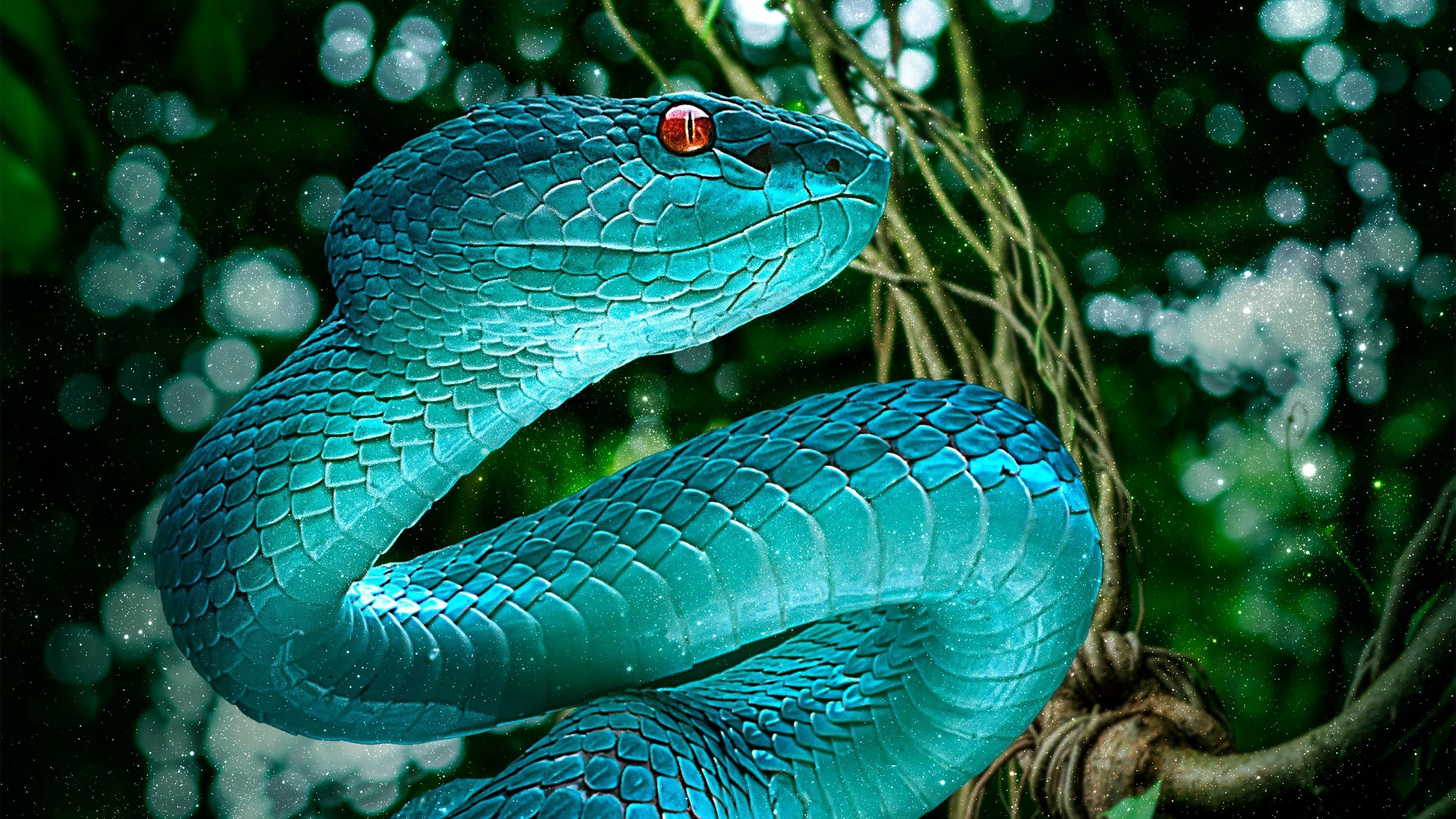 Голубая змея обои скачать
