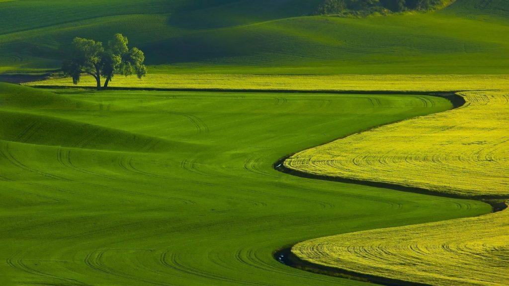 Пейзаж вид зелени склон горы природа обои скачать