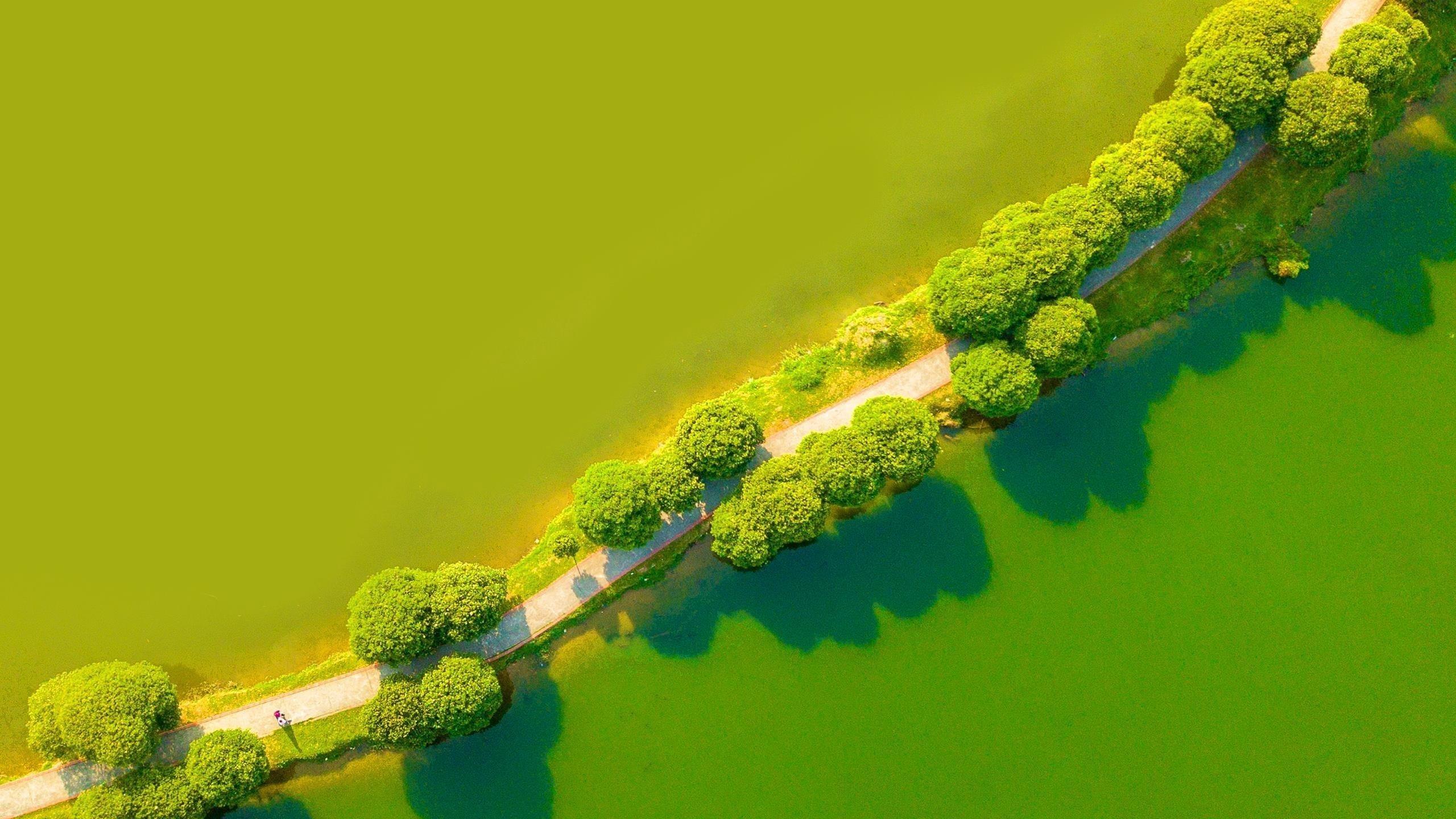 Зеленый пейзаж с высоты птичьего полета обои скачать