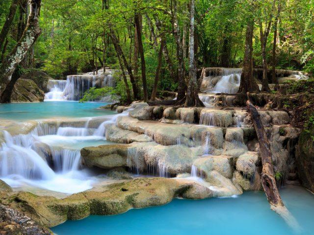 Природу водопад деревья лес
