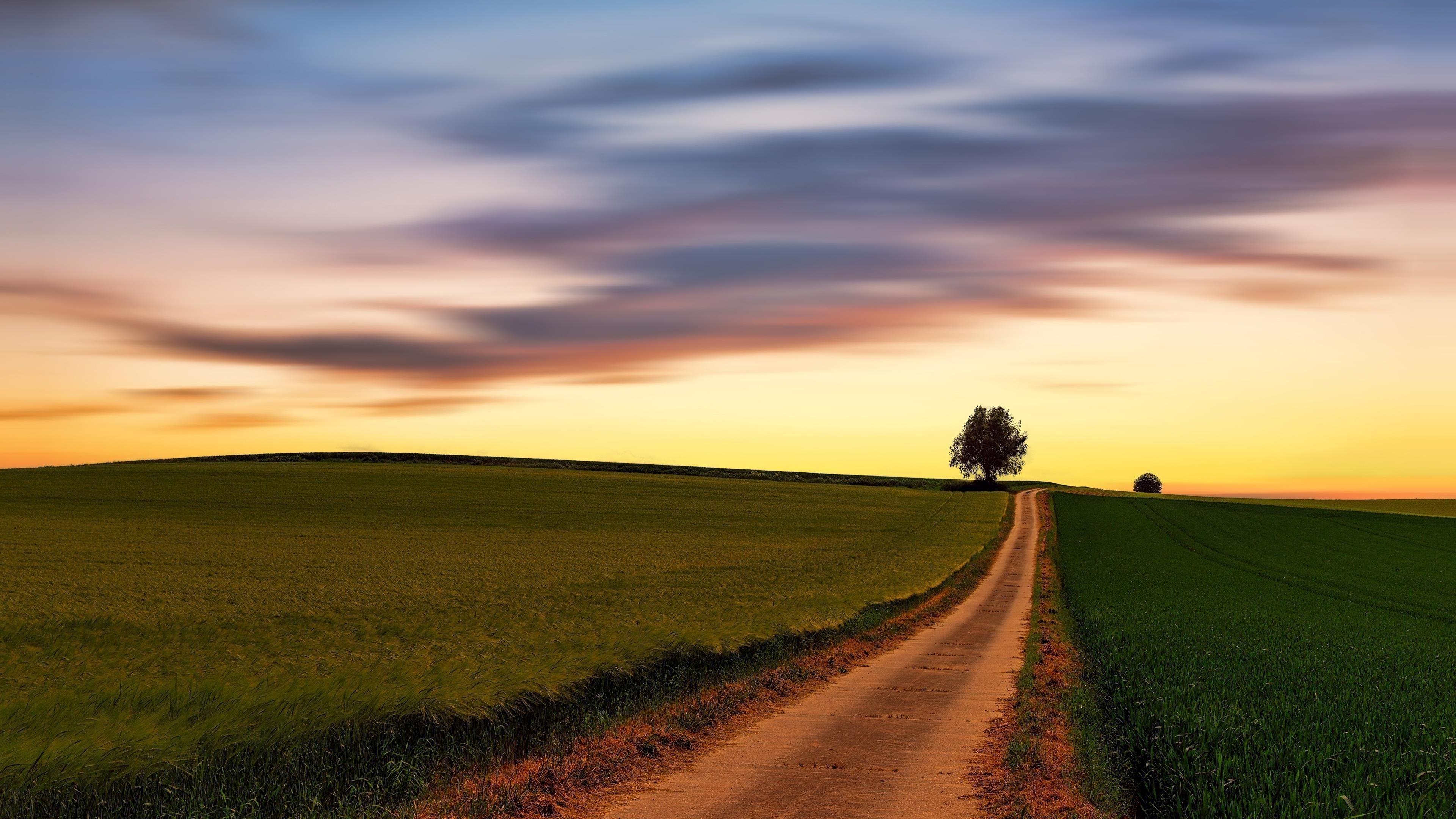 Песчаная дорожка между зеленой травой под черным облачным небом природа обои скачать
