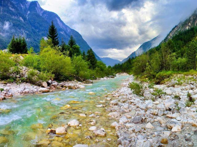Поток воды камни между зелеными деревьями растения кустарники горы с туманом под белыми облаками голубое небо природа