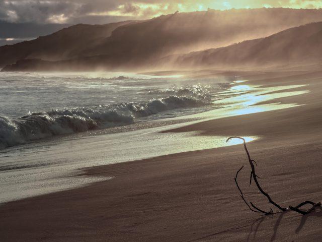 Берег моря в золотой час