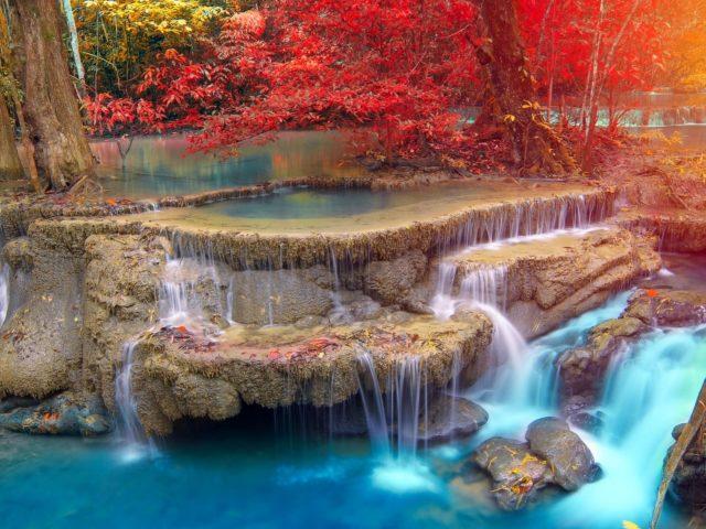 Желто красные осенние деревья на ручье водопад в дневное время природа