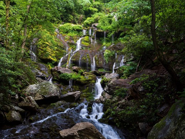 Водопады струятся по скалам зеленые деревья покрыты лесной природой