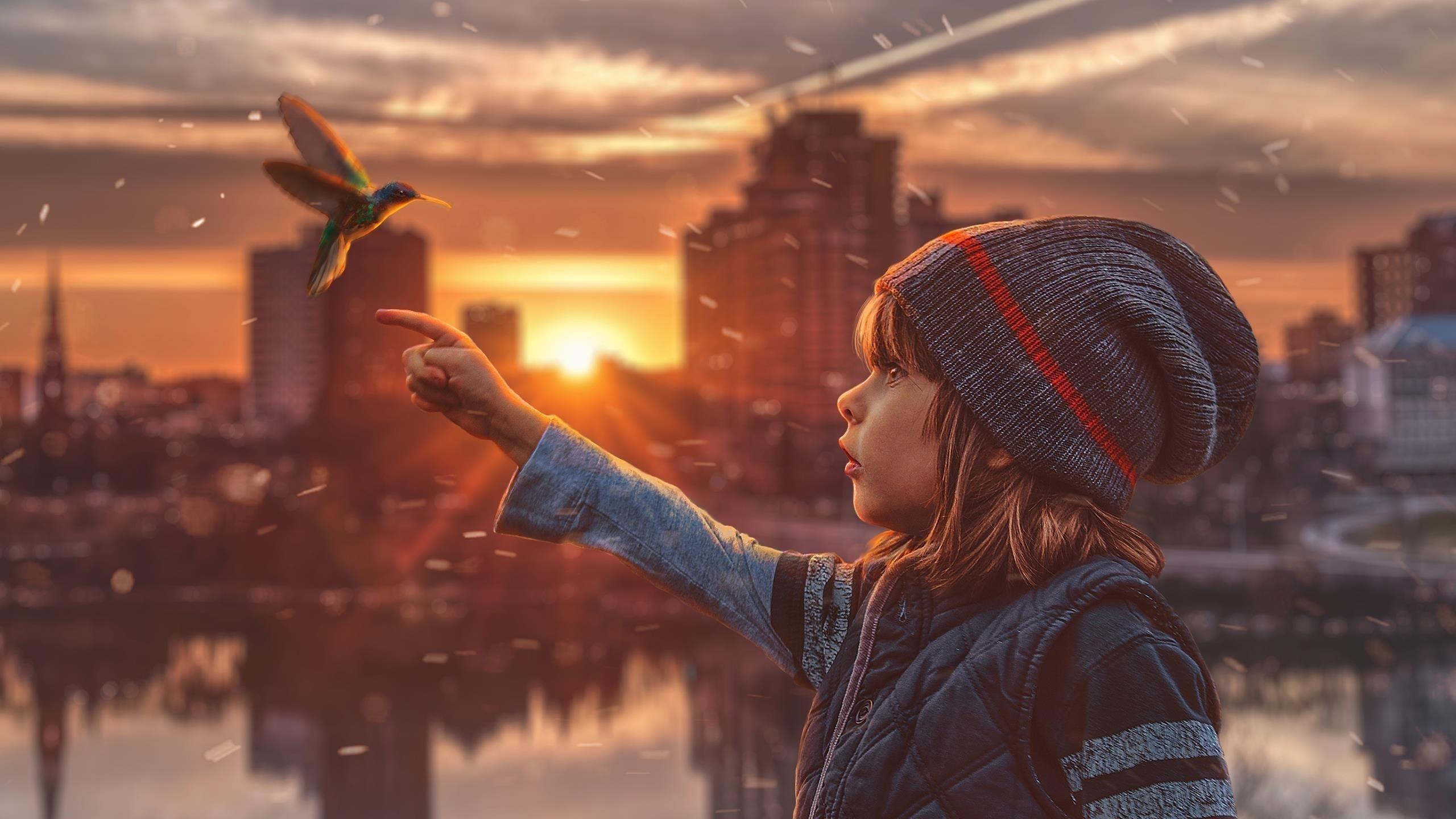 Детская мечта колибри обои скачать