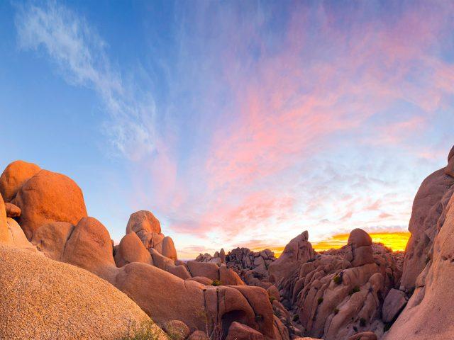 Гранитные валуны дерево Джошуа национальный парк Калифорния США.