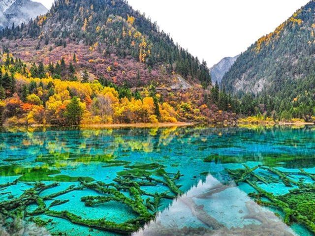 Пейзажный вид на зеленые желтые оранжевые осенние деревья склоны гор отражение природы реки