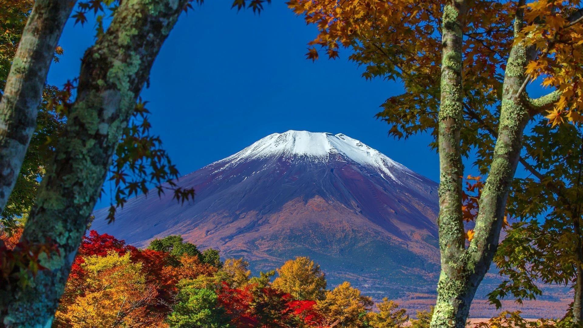 Пейзаж бело фиолетовой покрытой горы под голубым небом и красочными осенними деревьями природы обои скачать
