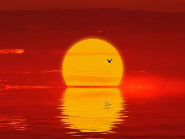 Солнце закат силуэт