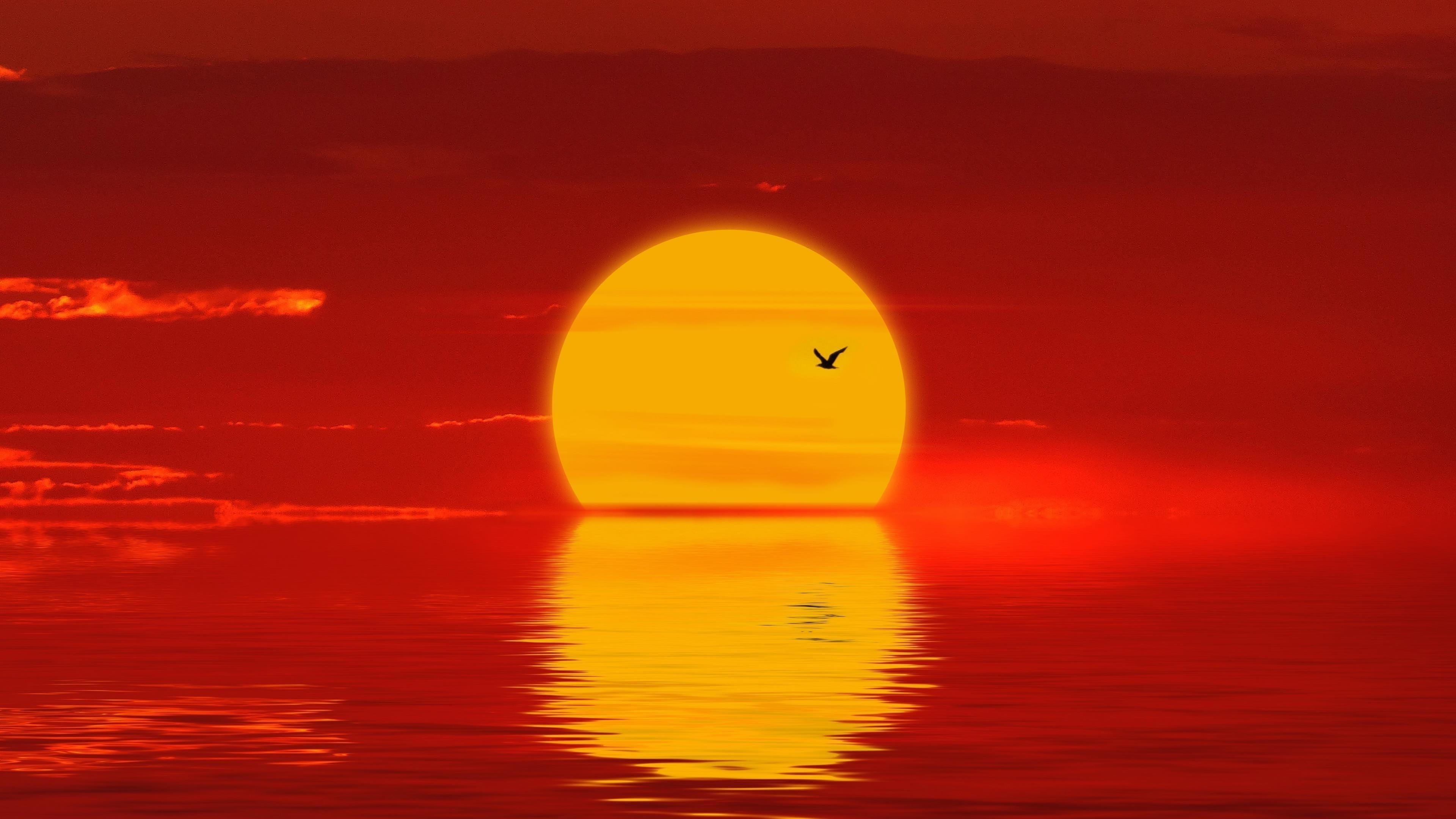 Солнце закат силуэт обои скачать