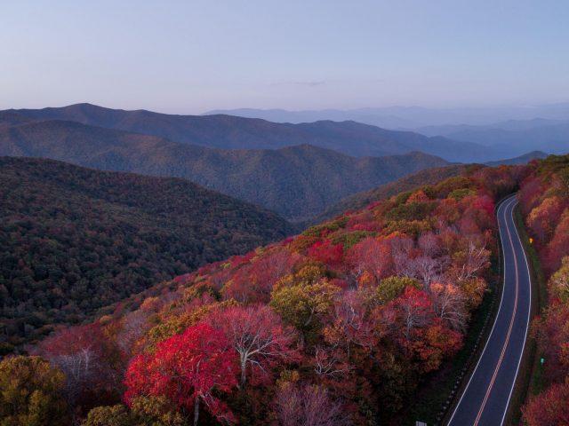 Дорога через осенний лес и деревья природа