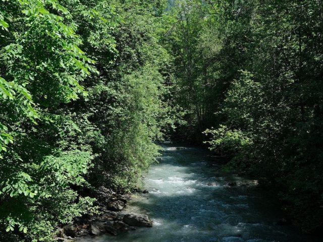 Речная вода рябь ручей между деревьями природа