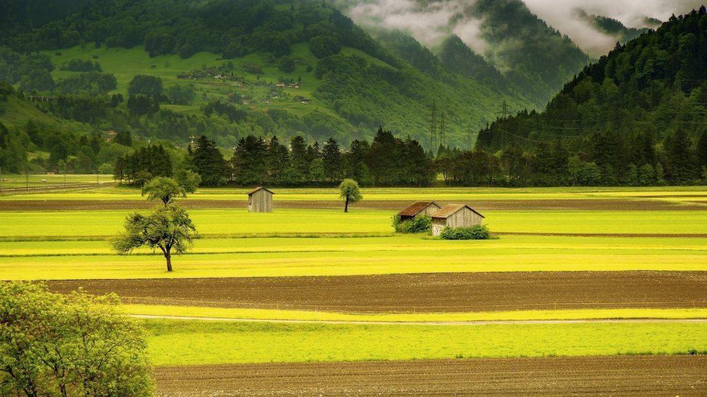 Пейзажный вид черепичных крыш домов на зеленых деревьях покрытых туманом гор и домов в луговой природе обои скачать