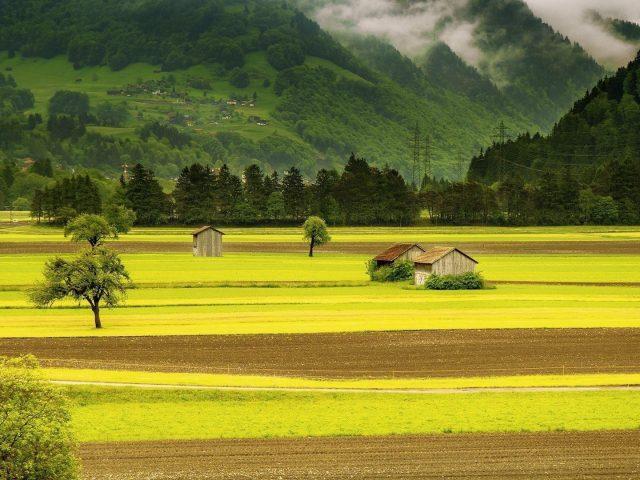 Пейзажный вид черепичных крыш домов на зеленых деревьях покрытых туманом гор и домов в луговой природе