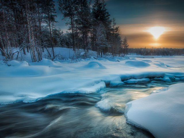 Ручей река между соснами во время заката солнца в зимней природе