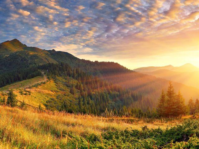 Зеленые деревья с зелеными покрытыми горными пейзажами утренние солнечные лучи природа