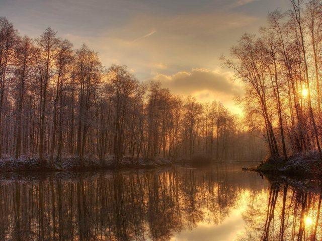 Солнечный свет, проходящий через сухие деревья напротив озера во время заката природа