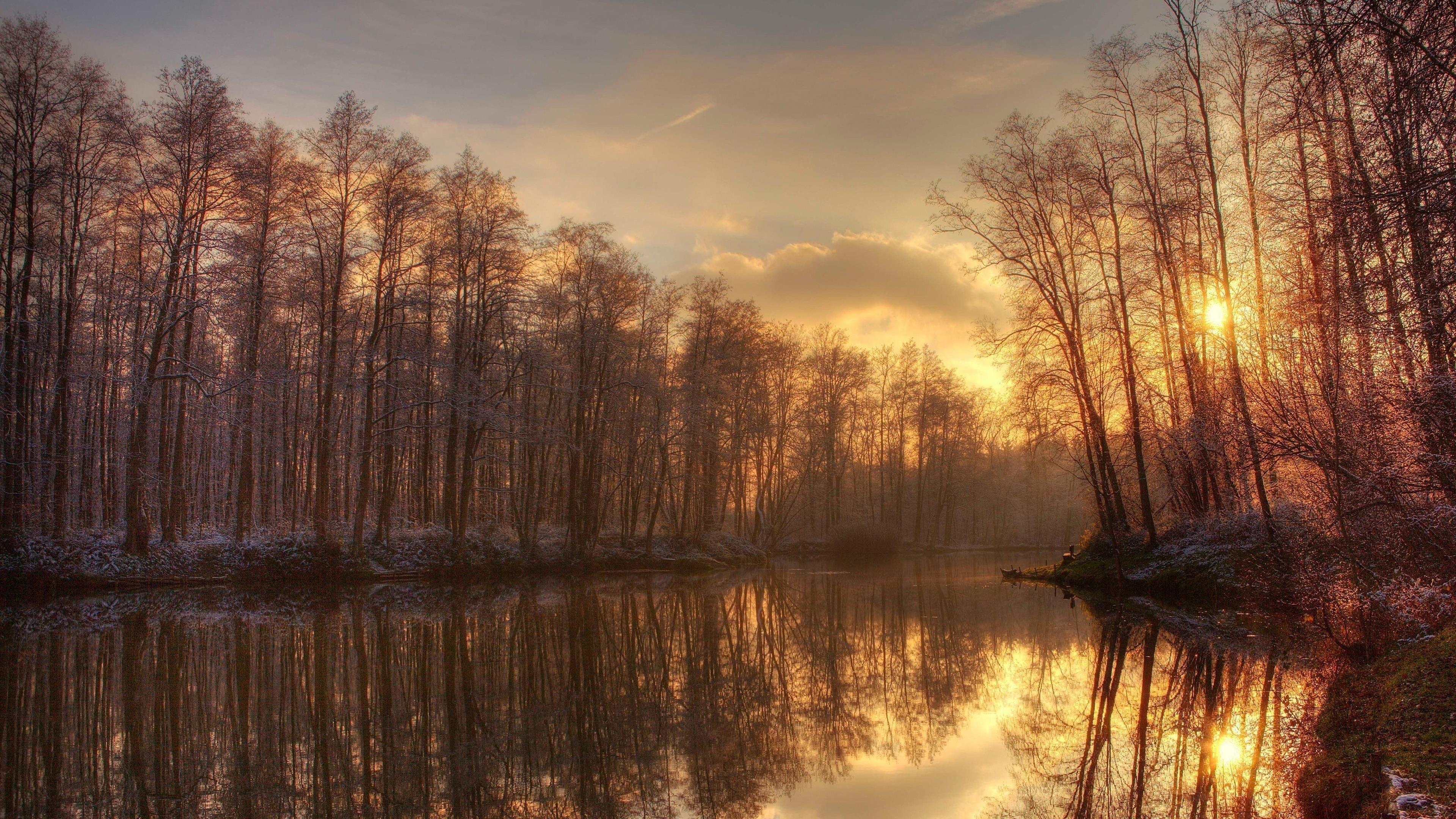 Солнечный свет, проходящий через сухие деревья напротив озера во время заката природа обои скачать