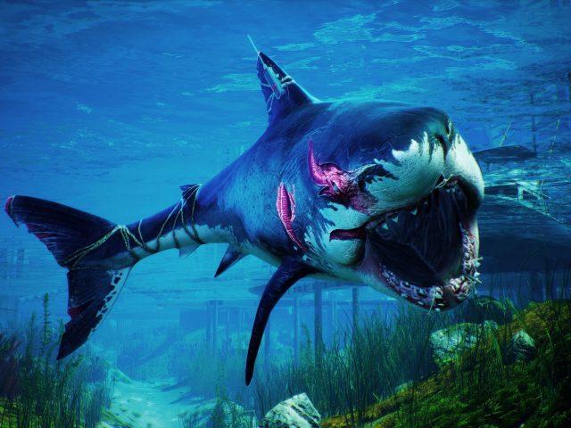 Людоед сине белая акула