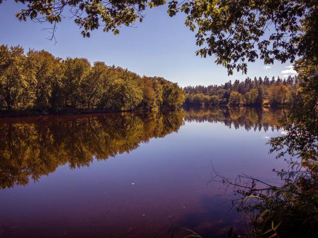 Воскресный речной пейзаж