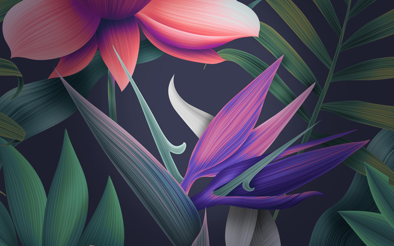 Цветочные Huawei мате 10 акции обои скачать