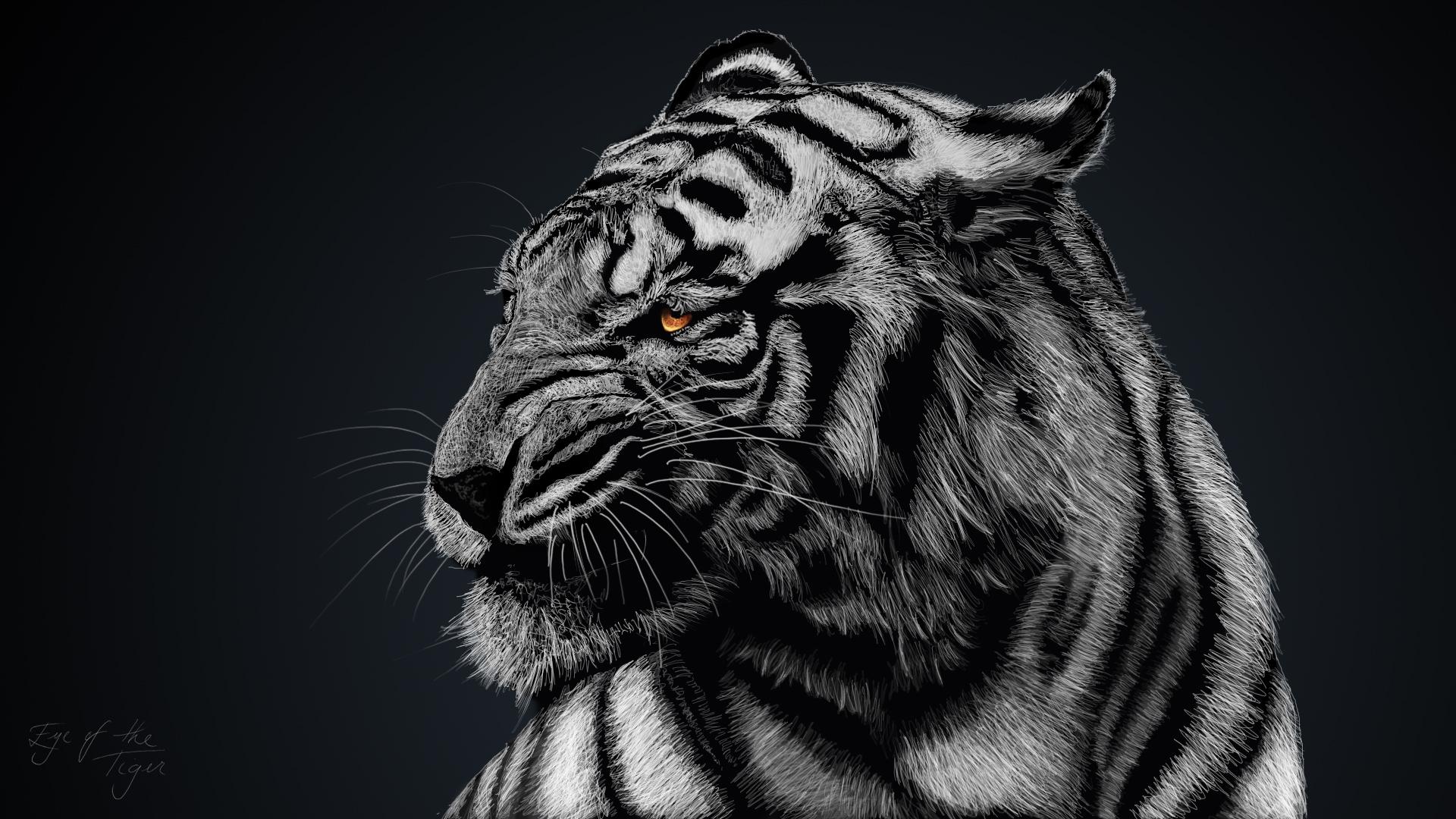 Искусство тигра обои скачать