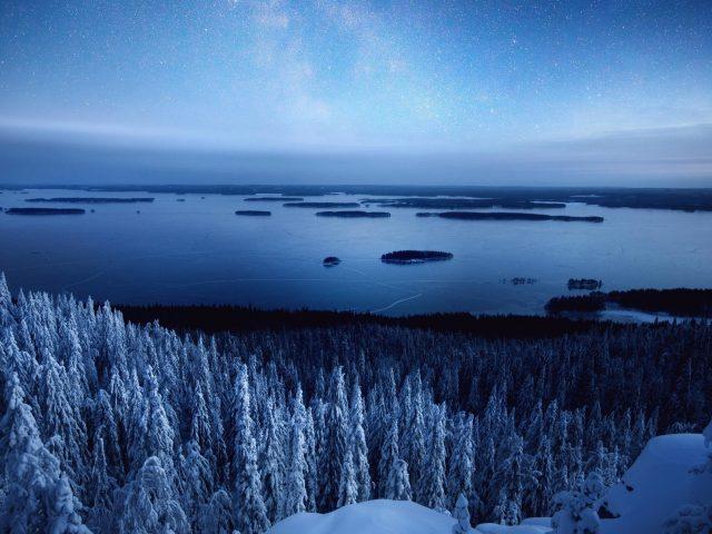 Зимнее небо и лес