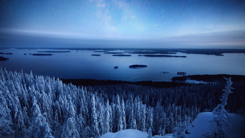 Зимнее небо и лес обои скачать