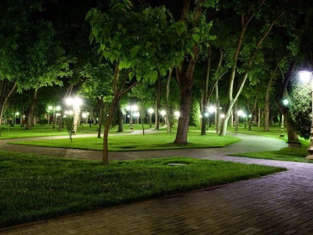 Каменная дорожка между зеленой травой, деревьями, белыми огнями природы