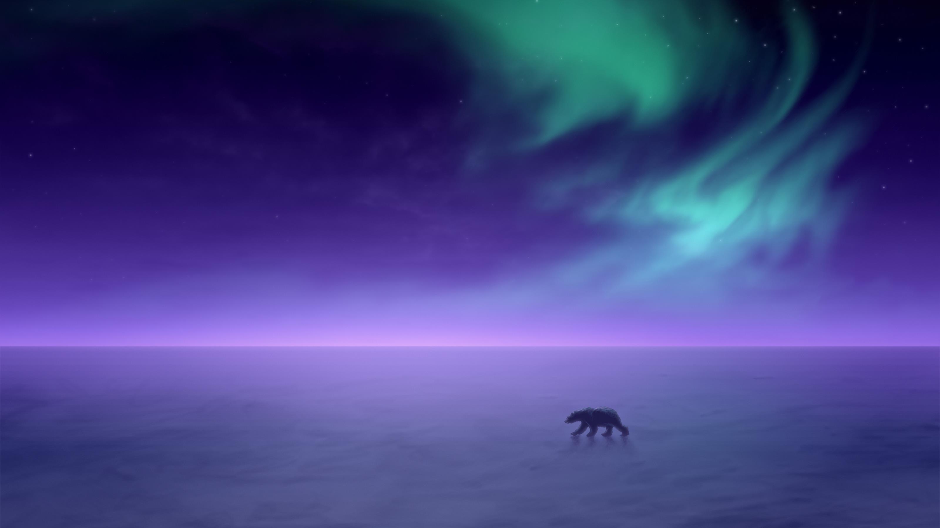 Северное сияние зима обои скачать