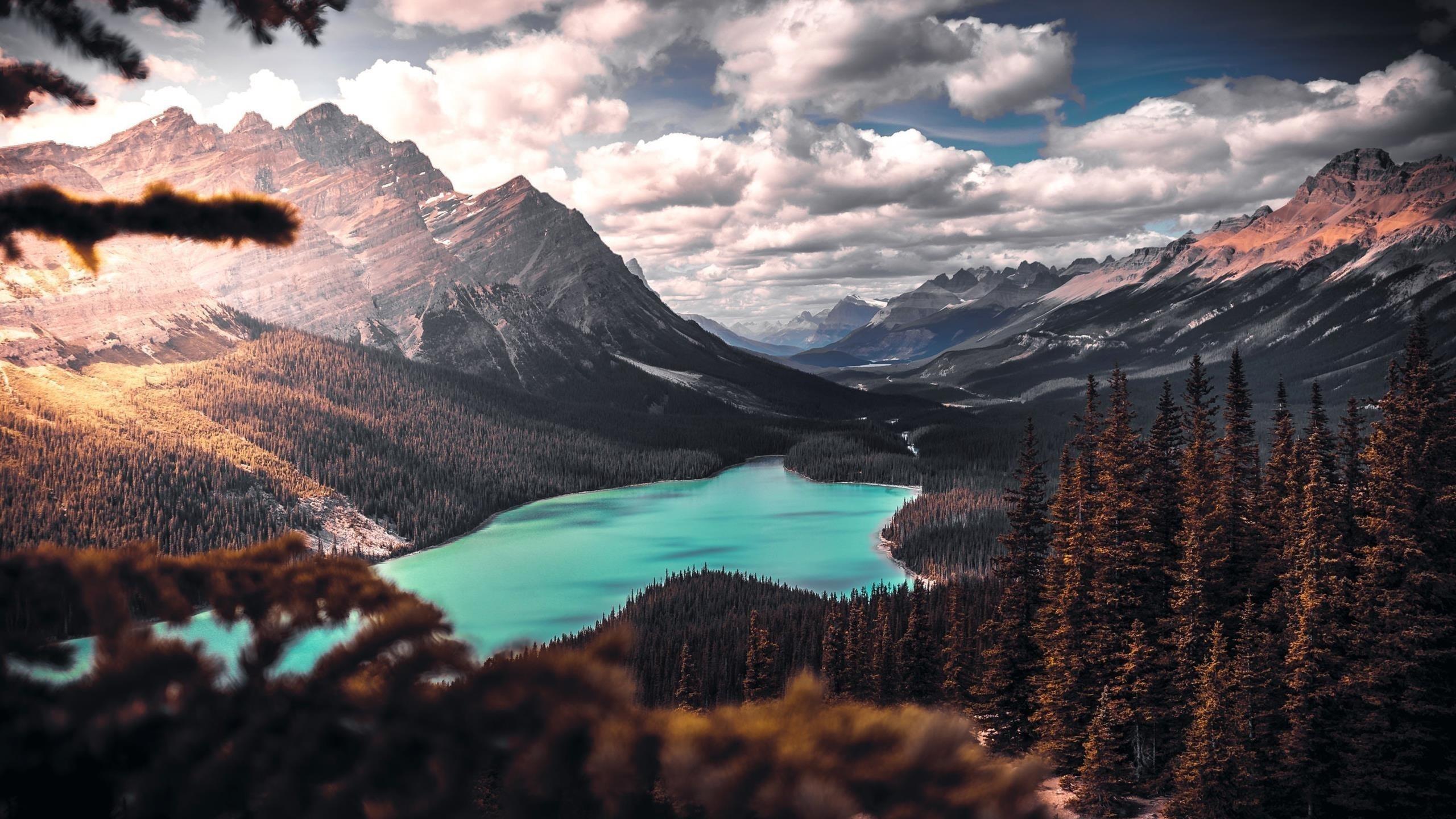 Живописный ландшафт обои скачать