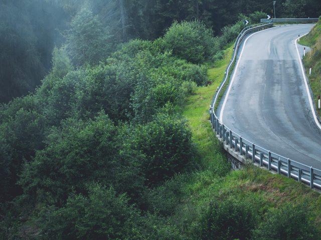 Туман покрыл зеленые деревья между бетонной дорогой природой