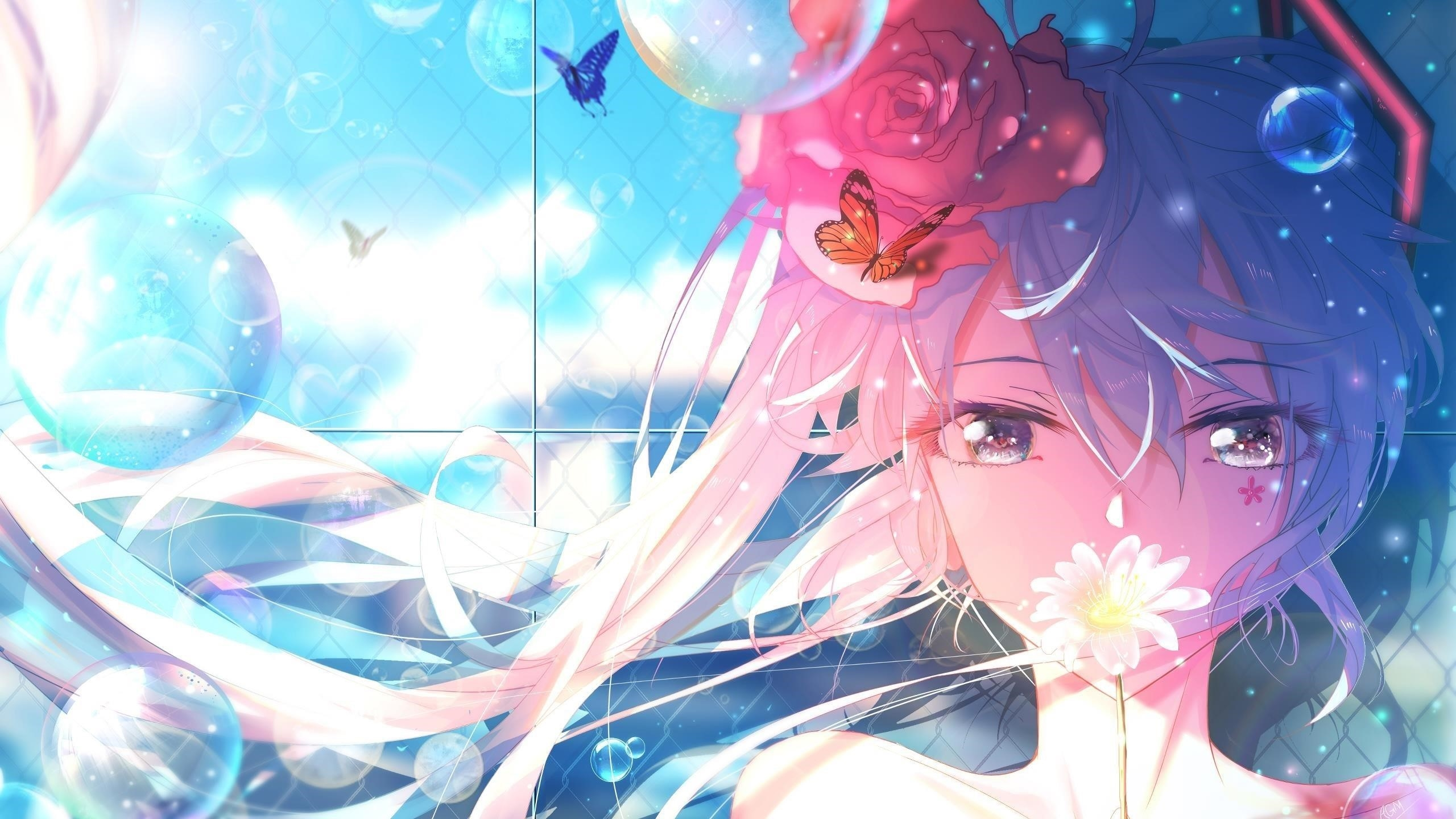 Miku anime girl обои скачать