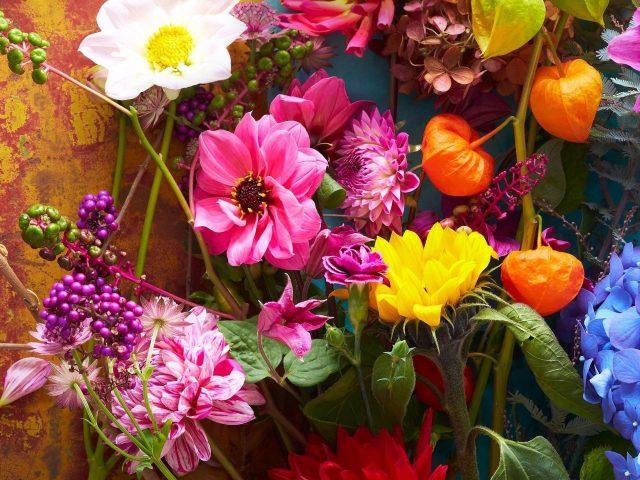 Цветы lg v35 think v35