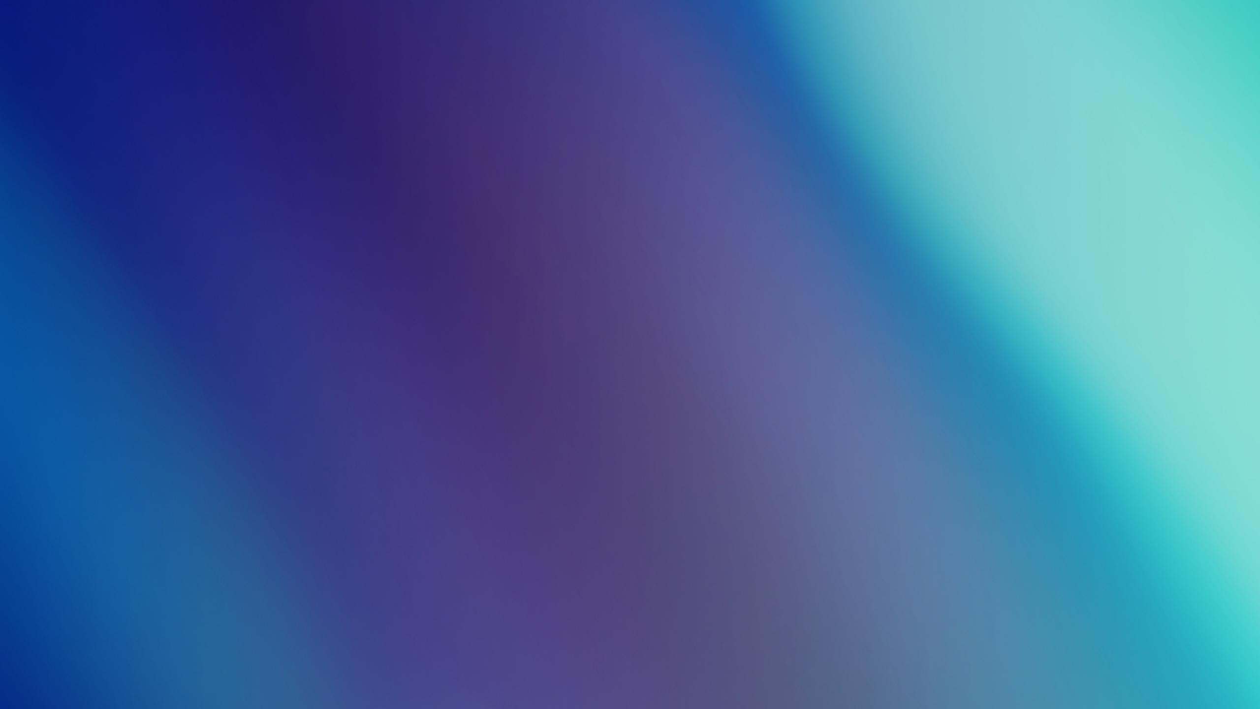Ровные голубые цветы минимальные обои скачать