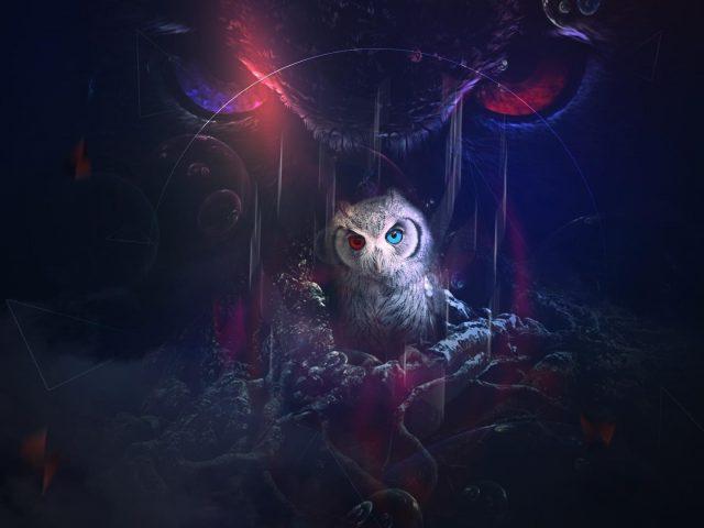 Мистическая сова