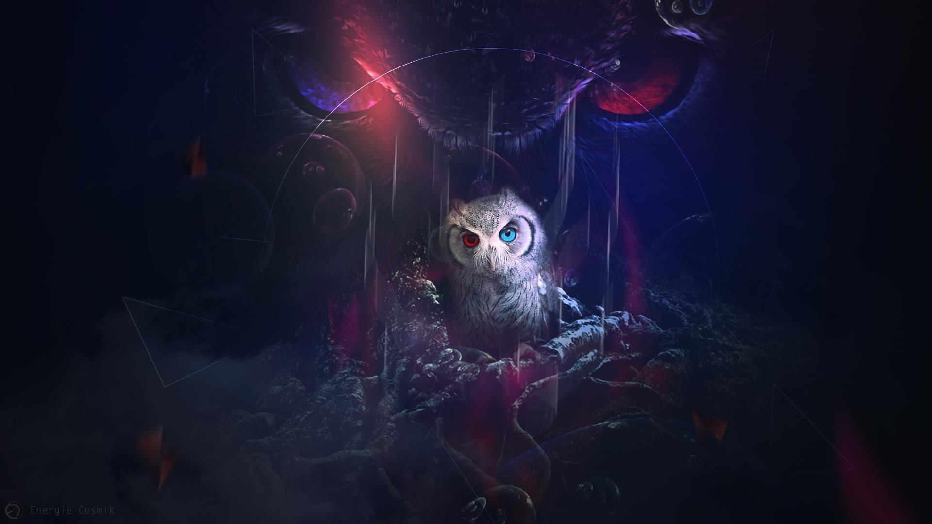 Мистическая сова обои скачать
