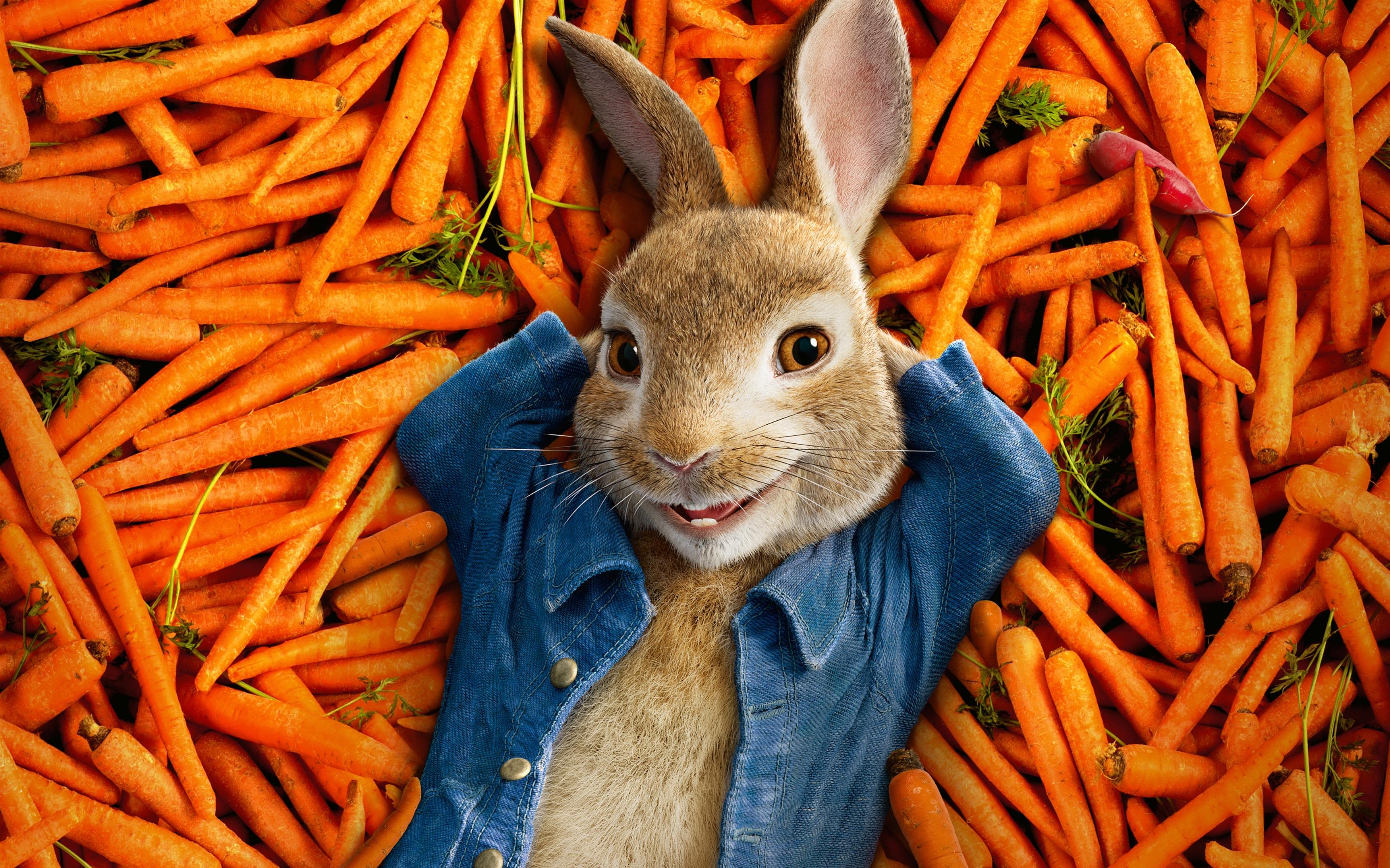 Питер кролик 2018 анимация обои скачать