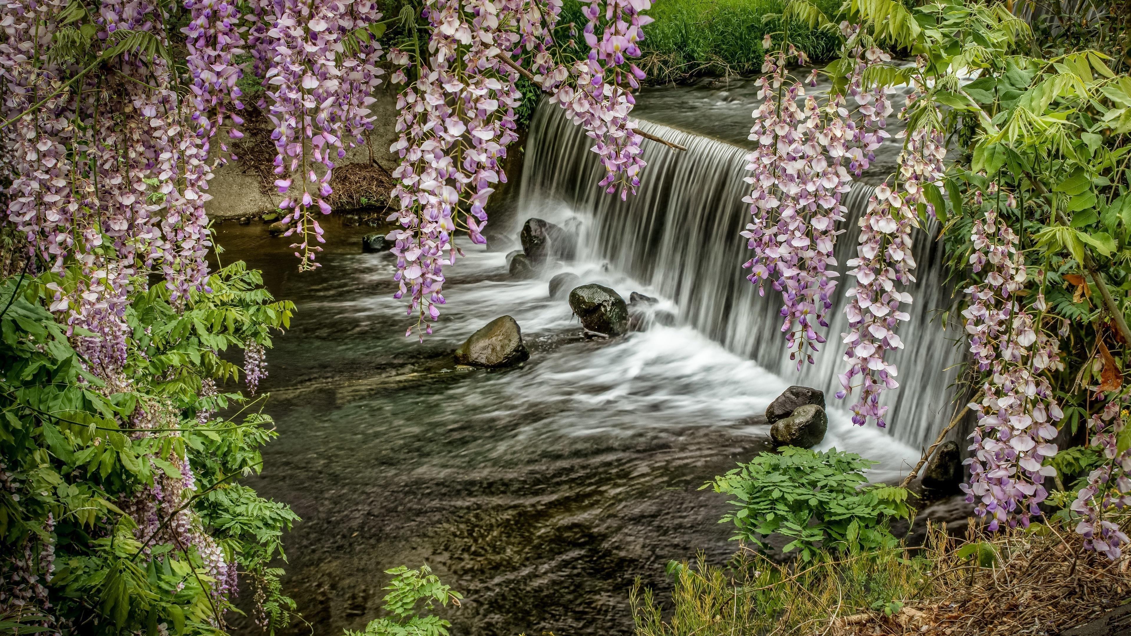 Водопад камни растения обои скачать