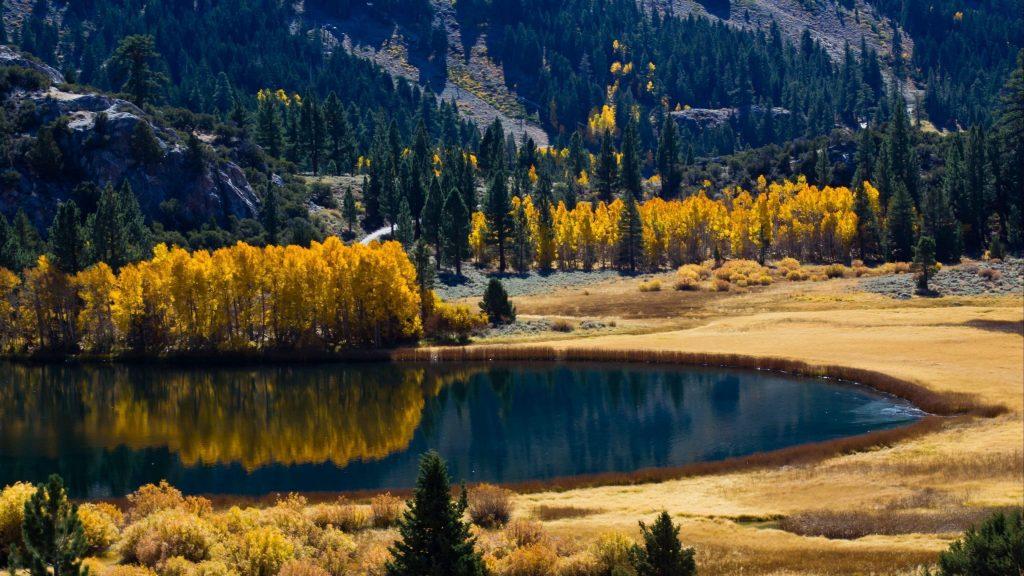 Озеро окружено осенними деревьями и горной природой обои скачать
