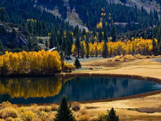 Озеро окружено осенними деревьями и горной природой