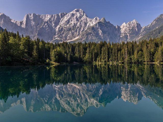 Отражение калифорнийской лесной горы на воде озера в природе национального парка Йосемити