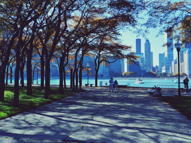 Chicago,  чикаго,  небоскребы,  парк