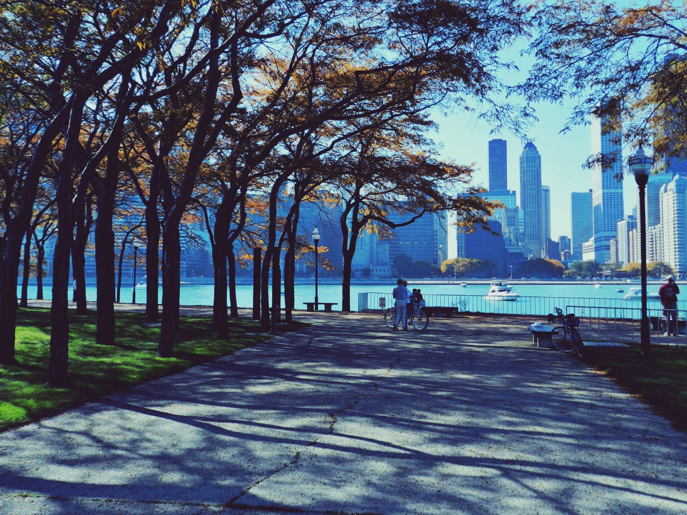 Chicago, чикаго, небоскребы, парк обои скачать
