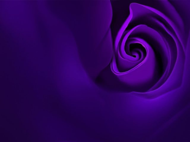 Фиолетовая роза oppo r15 stock