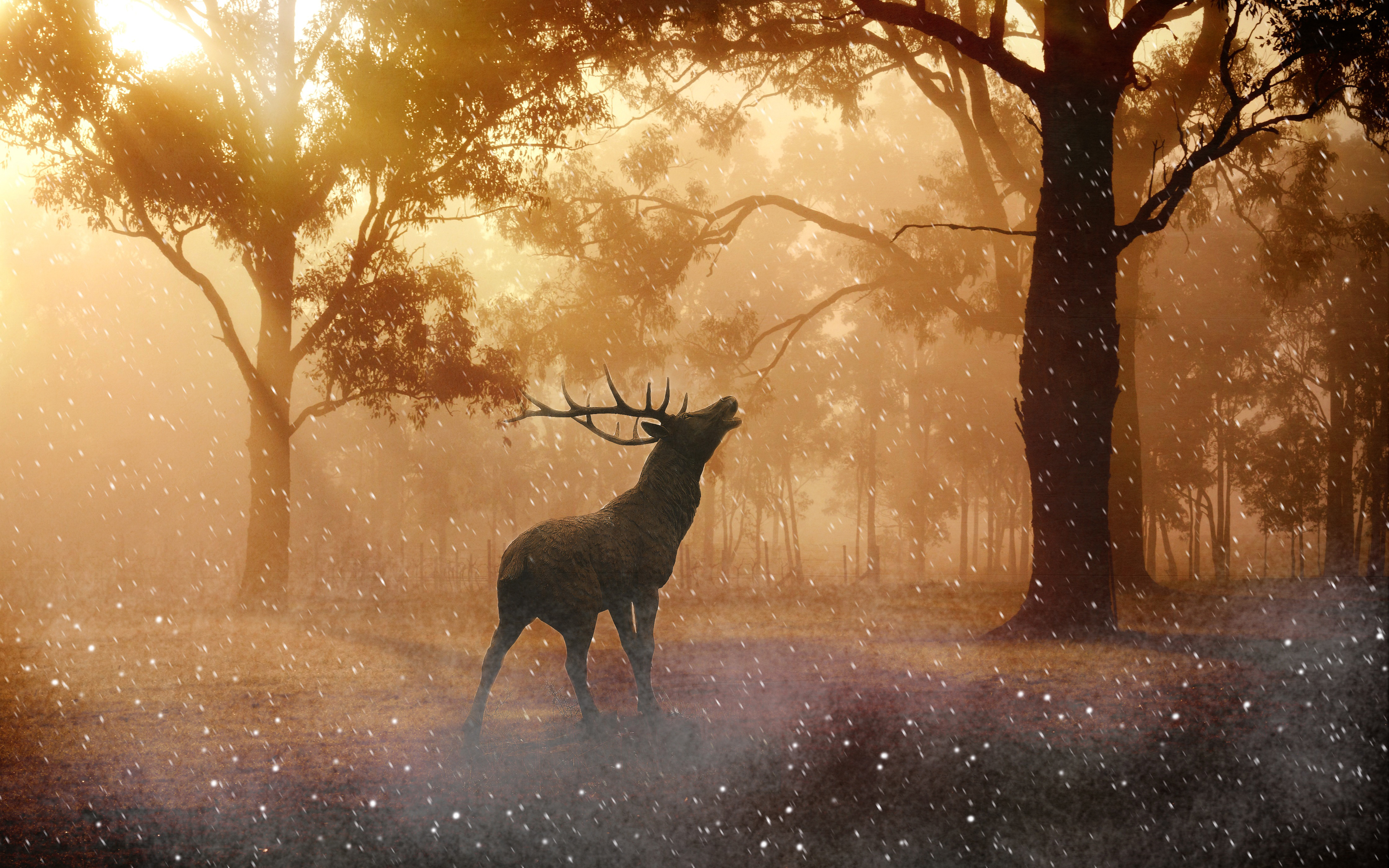 Перелог осень олень обои скачать