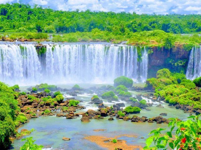Водопады, льющиеся по речным камням на воде деревья лесные растения кустарники природа